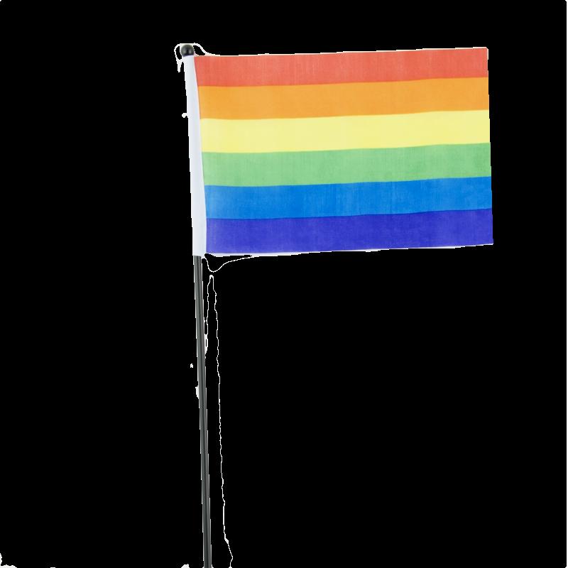 Rainbow Flag Png Pride Rainbow Flag on a Stick